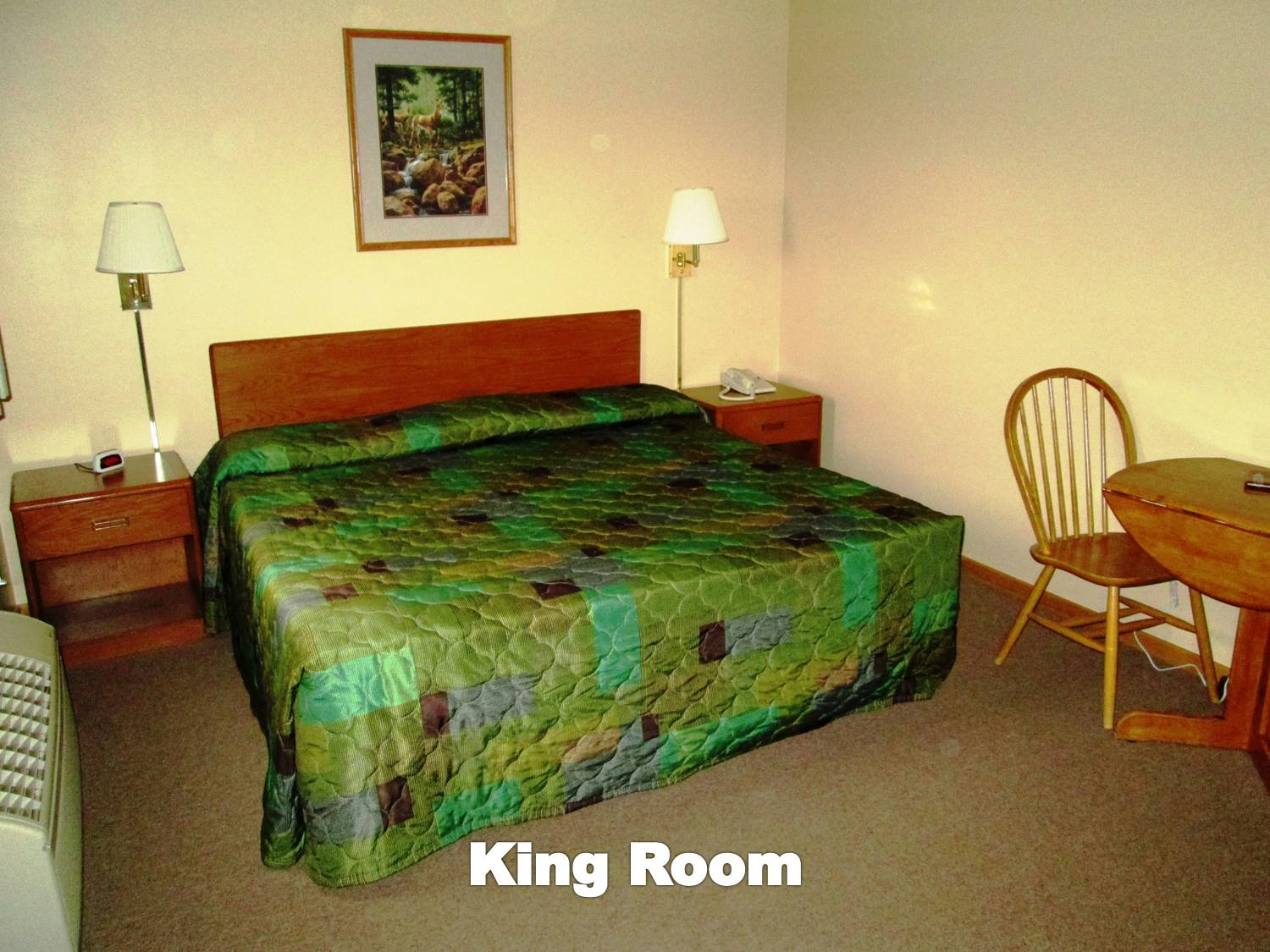 Room with one king bed and appropriate furnishings.